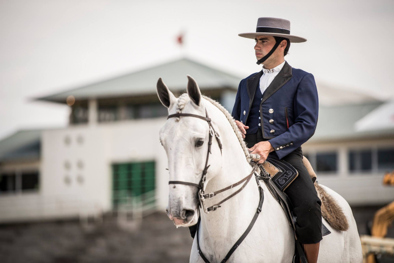 O Cavalo na FNA 2018