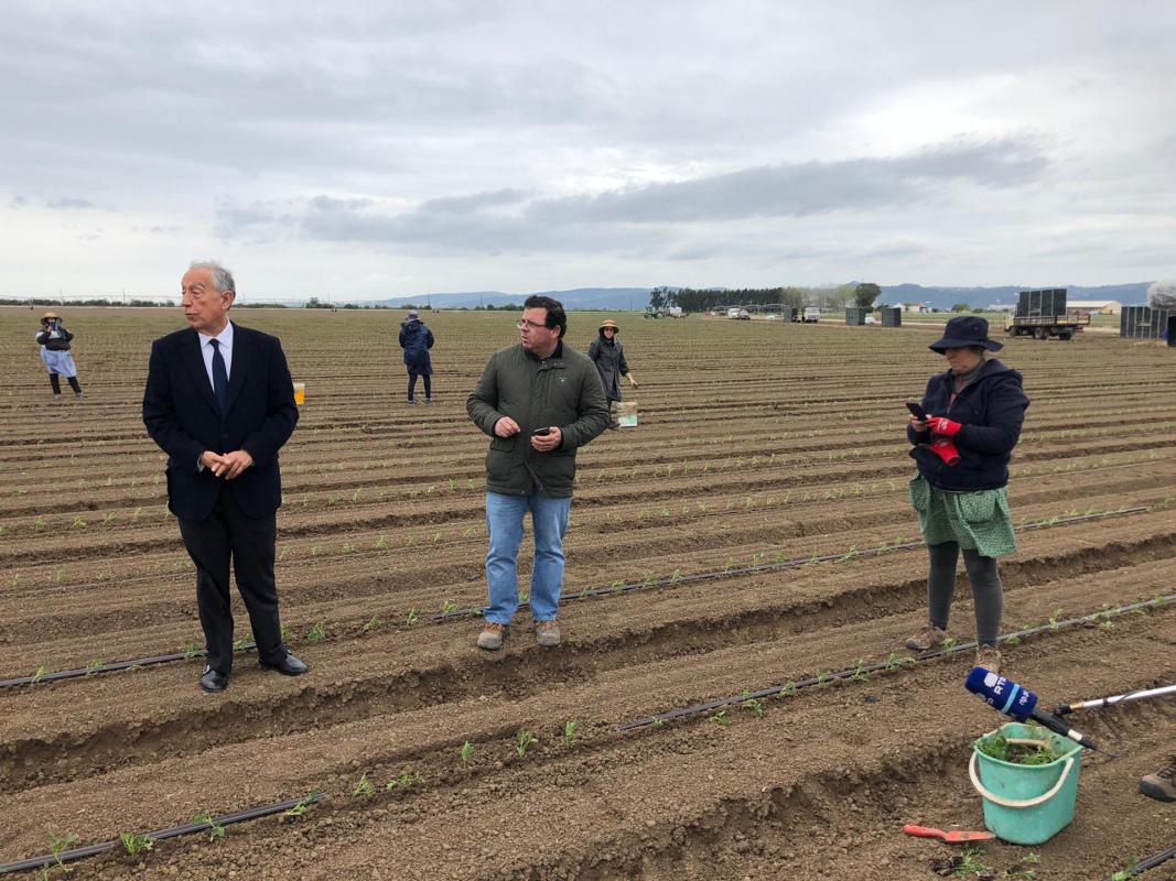 Presidente da República reconhece trabalho dos agricultores numa visita à Leziria de Vila Franca de Xira