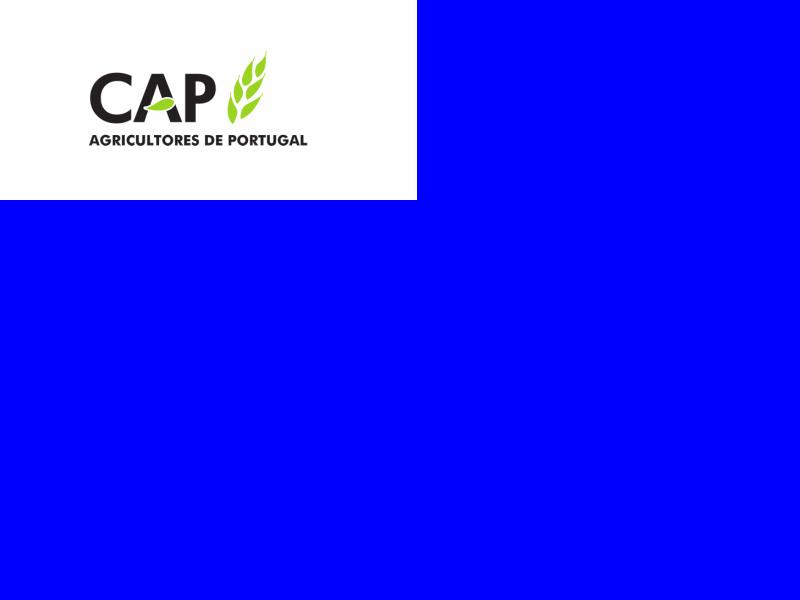 CAP adia Assembleia Geral de 27 de Março
