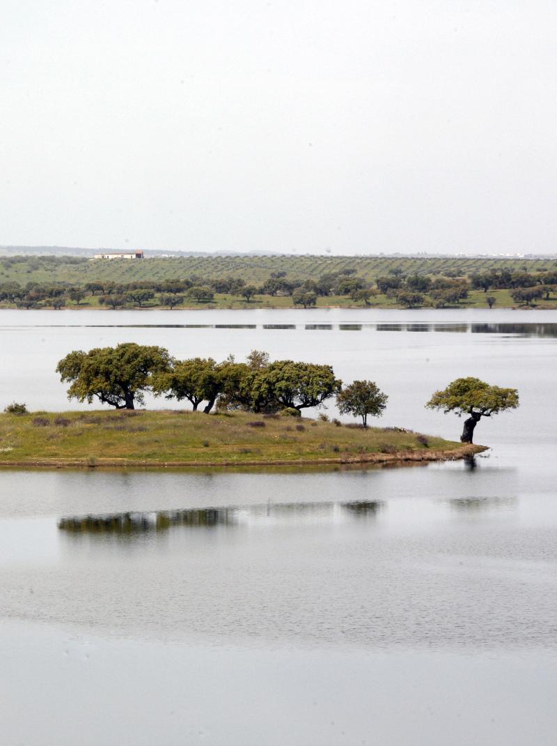 CAP EM BEJA para debater desafios em Alqueva e medidas de combate à seca prolongada