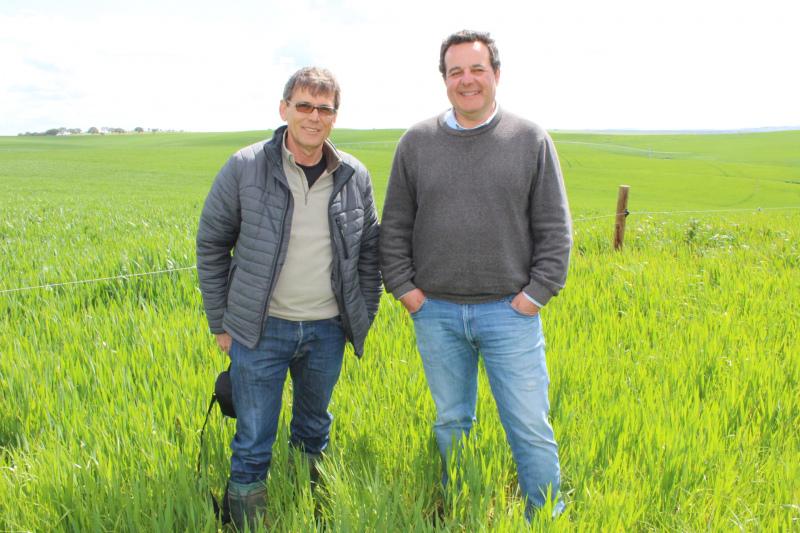 AGRICULTURA 2030 - Impacto económico e ambiental com 25% da área em Modo de Produção Biológico