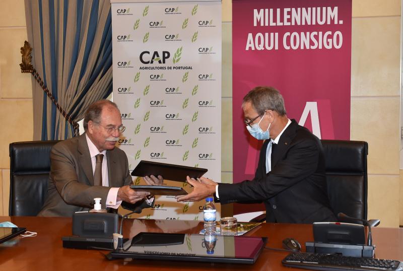 CAP e Millennium assinam apoio de 100 ME