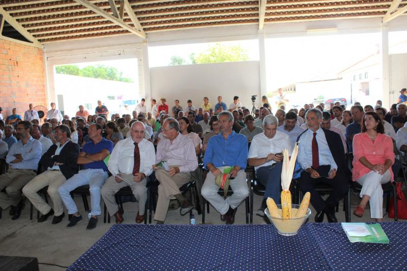 InovMilho reuniu 250 participantes em Coruche