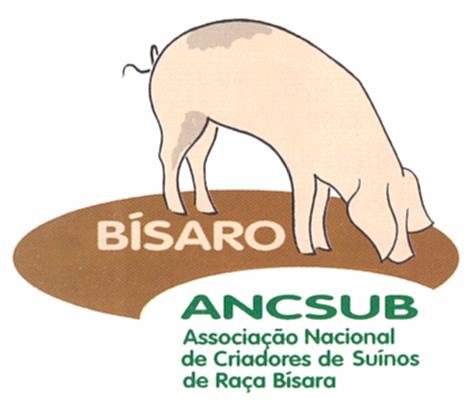 CRIADORES DE SUINOS BÍSAROS apreensivos com decisão da Universidade de Coimbra de proibir consumo carne de vaca