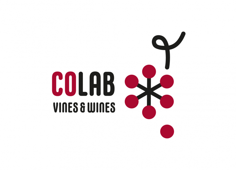 Colab Vines&Wines Brokerage Event em Anadia, 10 de Dezembro