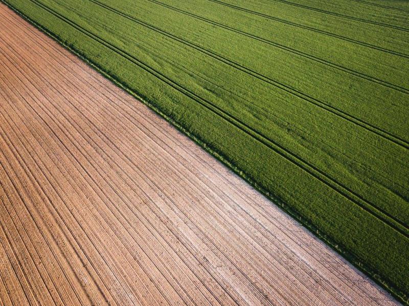 INE confirma crescimento da agricultura em 2017