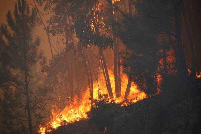 CEASEFIRE inovação na prevenção de incêndios