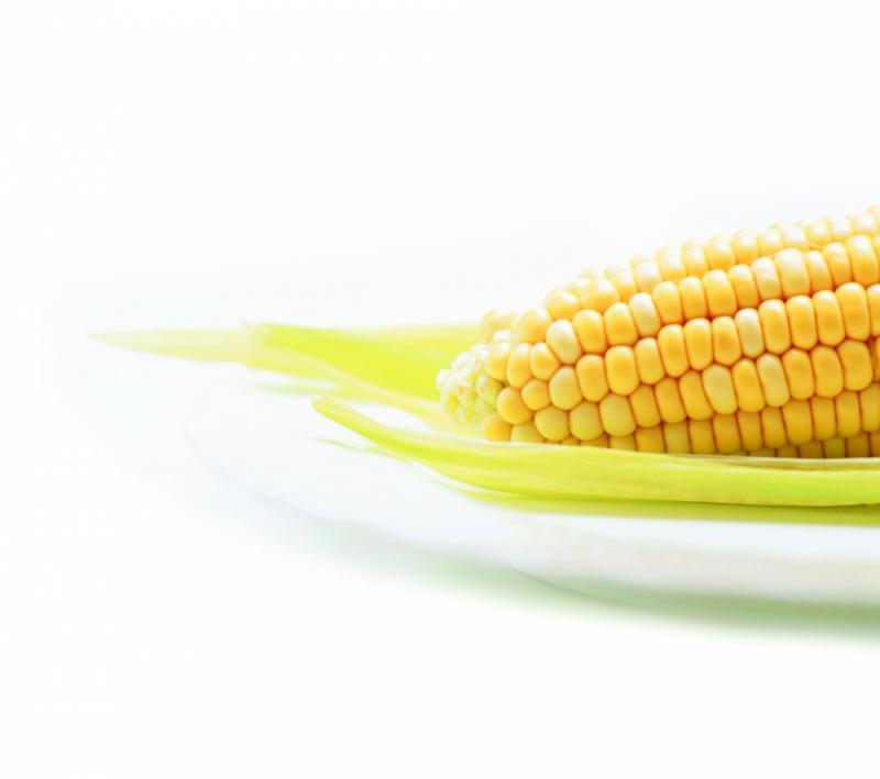 ANPROMIS organizou 9º Colóquio Nacional do Milho