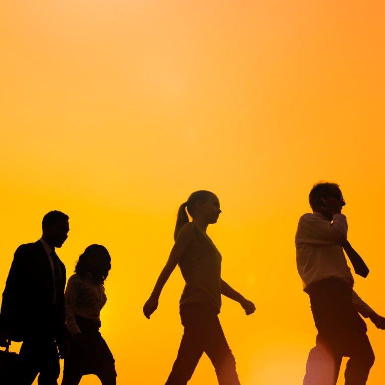 """Enquanto Organismo Intermédio do Programa Operacional Competitividade e Internacionalização (POCI), a CAP pretende recrutar um técnico para o Projeto """"Formação-Ação"""", para acompanhamento de todo o processo com as PME, com as seguintes responsabilidades:  - Gestão da Candidatura das entidades promotoras;  - Orientação e acompanhamento das entidades promotoras do projeto;  - Realização de visitas às entidades promotoras (auditorias) e às PMEs (a nível nacional) e respetivos Relatórios;  - Controlo e registo da informação física e financeira nos sistemas de gestão de informação.  PERFIL:  - Formação superior em Ciências Agronómicas e afins, Contabilidade, Fiscalidade e Auditoria;  - Experiência na área de formação/consultoria;  - Boa capacidade de relacionamento interpessoal;  - Dinamismo, proatividade e espírito de iniciativa;  - Responsabilidade e rigor.  LOCAL DE TRABALHO: base em Lisboa, com disponibilidade total para deslocações por todo o território continental.  CONTACTO:Envio de Curriculum Vitae detalhado para oi_cap@cap.ptaté 23/11/2018."""