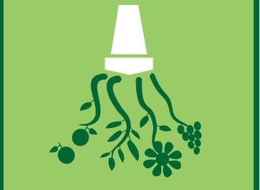 COTHN realiza 2º Colóquio sobre o Uso Sustentável dos Pesticidas