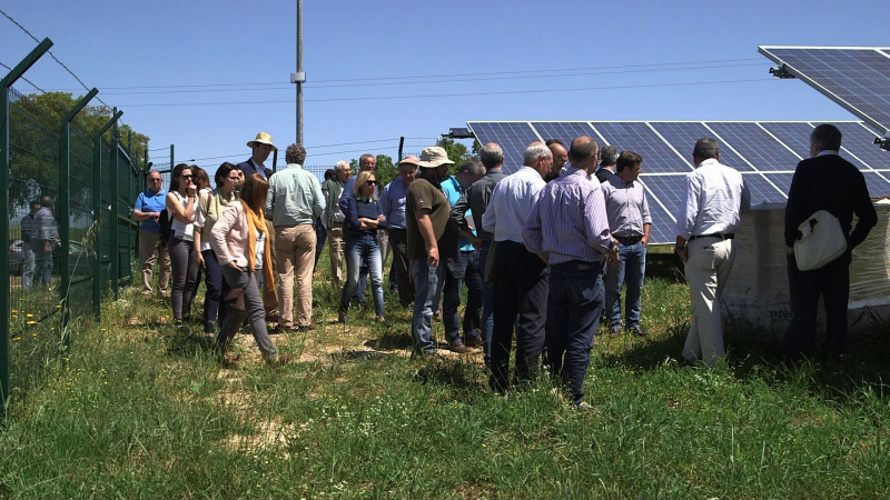 Regantes pedem apoios ao investimento  em energias limpas