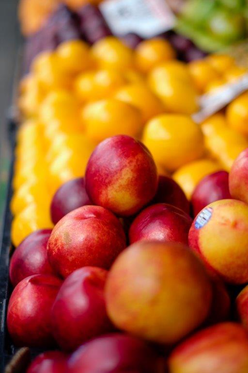 PDR 2020 - Candidaturas até 7 de Junho para Investimento em Fruticultura e Olivicultura