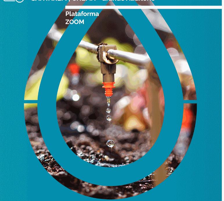 A Importância da Água na Agricultura